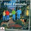 Fünf Freunde 117 und der Wolf in den Highlands Hörbuch