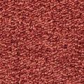 JOKA Teppichboden Focus Vliesrücken - Farbe 68 400 cm breit