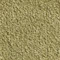 JOKA Teppichboden Gala - Farbe 20 400 cm breit