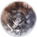 Kahla Einzelteile Untertasse 12 cm Salt Made
