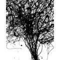 Komar Vlies Fototapete munich design book - Curls 200 x 250 cm
