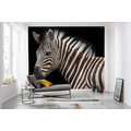 Komar National Geographic Damara Zebra 400 x 280 cm
