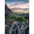 """Komar Vlies Fototapete """"Flowering Tales"""" 200 x 280 cm"""