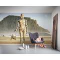 """Komar Vlies Fototapete """"Star Wars Classic RMQ Droids"""" 500 x 250 cm"""