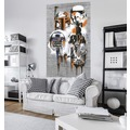 "Komar Vlies Panel ""Star Wars Celebrate The Galaxy"" 120 x 200 cm"