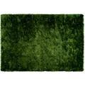 Lalee Teppich Madagaskar - Ambila Grün 120 x 170 cm
