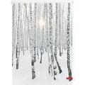 Lichtblick Rollo Klemmfix, ohne Bohren, blickdicht, Birkenwald - Weiß Breite: 100 cm