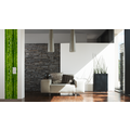"Livingwalls selbstklebendes Panel ""Pop.up Panel"", grün 2,50 m x 0,35 m"