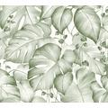 Livingwalls Vliestapete Colibri Tapete in Dschungel Optik grün weiß 366272 10,05 m x 0,53 m