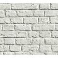 Livingwalls Vliestapete Metropolitan Stories Anke & Daan Amsterdam grau weiß 369122 10,05 m x 0,53 m