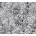 Livingwalls Vliestapete New Walls Tapete Cosy & Relax mit Kirschblüten weiß schwarz grau 374201 10,05 m x 0,53 m