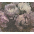 Livingwalls Vliestapete New Walls Tapete Romantic Dream romantische Rosen weiß lila grau 373922