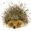Paper+Design Servietten Tissue 33 x 33 cm Cute hedgehog 20er Pack