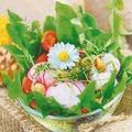 Paper+Design Servietten Tissue Garden salad 33 x 33 cm 20er