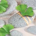 Paper+Design Servietten Tissue Ginkgo biloba 33 x 33 cm 20er