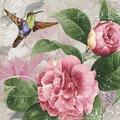 Paper+Design Servietten Tissue Hummingbird dance 33 x 33 cm 20er