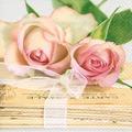 Paper+Design Servietten Tissue Love letters 33 x 33 cm 20er