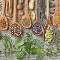 Paper+Design Servietten Tissue Spices & herbs 33 x 33 cm 20er