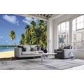 papermoon Fototapete 7 Bahnen, Digitaldruck Exotic Palm Beach, Tapetenbahn 50cm, Spezial Tapetenpapier, BlueBack 350 x 260 cm