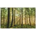papermoon INFRAROT BILDHEIZUNG 600W, 60X100cm, Wald Morgensonne Infrarotheizung