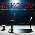 """Piano Sonata No. 29 in B-flat major op. 106 """"Große Sonate für das Hammerklavier"""""""