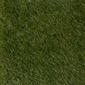 Rasen Deluxe Kunstrasen Mallorca 400 cm Breite x Wunschlänge
