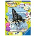 Ravensburger Malen nach Zahlen - Pferd am Strand