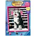 Ravensburger Malen nach Zahlen - Singing Cat