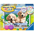 Ravensburger Süße Hundewelpen