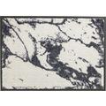 Schöner Wohnen Fußmatte Miami Design 001, Farbe 004 Marmor silber 67 x 100  cm