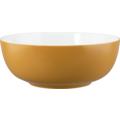 Seltmann Weiden Life Foodbowl 20 cm Amber Gold