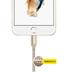 Kanex Premium Charge/Sync-Kabel - Apple Lightning auf USB-A - 1.20m - gold