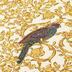 Versace Vliestapete Barocco Birds metallic weiß gelb 10,05 m x 0,70 m