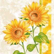 Duni Cocktail-Servietten 3lagig Tissue Motiv Girasol, 24 x 24 cm, 20 Stück, Sonnenblume