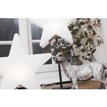 8 Seasons Shining Window Star (LED) Leuchtstern