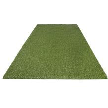 Andiamo Kunstrasenteppich Jever grün 100cm x 200cm