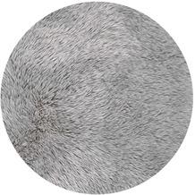 Andiamo Teppich Ovium silber 80 cm x 150 cm