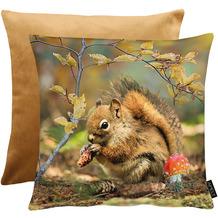APELT Herbstzeit Wendekissen Eichhörnchen im Herbstwald braun / grün / multi 45x45 cm