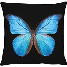 APELT Papillon Unique Kissenhülle schwarz-blau 46 cm x 46 cm