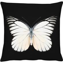 APELT Papillon Unique Kissenhülle schwarz-weiß 46 cm x 46 cm