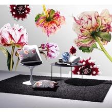 APELT Unique Kissen Vorderseite: schwarz/weiß/pink / Rückseite: bordeaux Samt Uni 33x45 cm