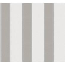 Architects Paper Vliestapete Alpha Tapete gestreift beige braun metallic 333291 10,05 m x 0,53 m