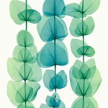 AS Création florale Mustertapete in Röntgen Optik X-Ray Vliestapete grün metallic weiß 342454 10,05 m x 0,53 m