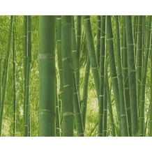 AS Création fotorealistische Mustertapete Authentic Walls Papiertapete grün 938718 10,05 m x 0,53 m