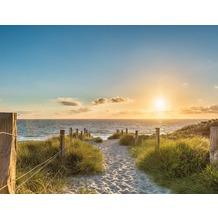 AS Création Fototapete Sonnenuntergang am Strand 130 g Vlies grün beige hellblau 403704 3,36 m x 2,60 m