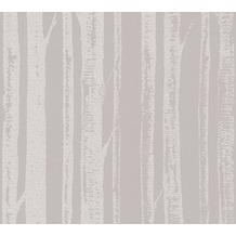 AS Création Mustertapete in Birkenoptik Ökotapete Scandinavian Style grau metallic 341351 10,05 m x 0,53 m