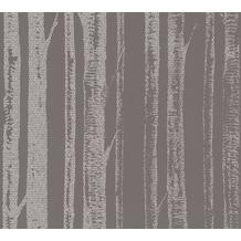 AS Création Mustertapete in Birkenoptik Ökotapete Scandinavian Style grau metallic weiß 341353 10,05 m x 0,53 m