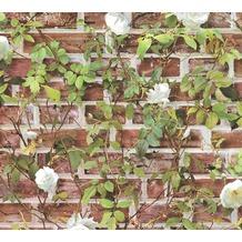 AS Création Papiertapete Authentic Walls 2 Tapete in Backstein Optik rot grün weiß 365721 10,05 m x 0,53 m