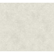 AS Création Vliestapete Asian Fusion Unitapete grau 374676 10,05 m x 0,53 m