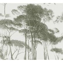 AS Création Vliestapete History of Art Waldtapete grün weiß 376512 10,05 m x 0,53 m